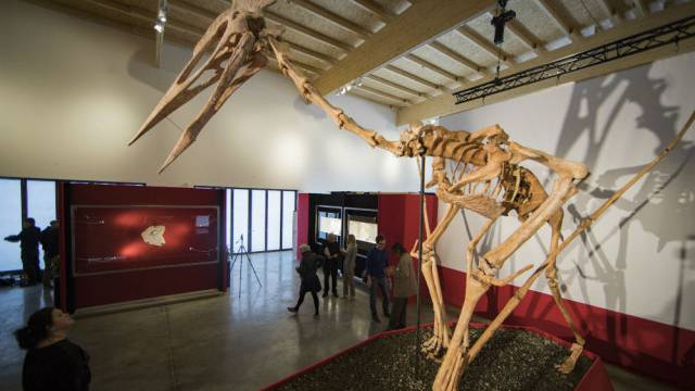 Pokazali 'Drakulu', najvećeg do sad pronađenog pterodaktila