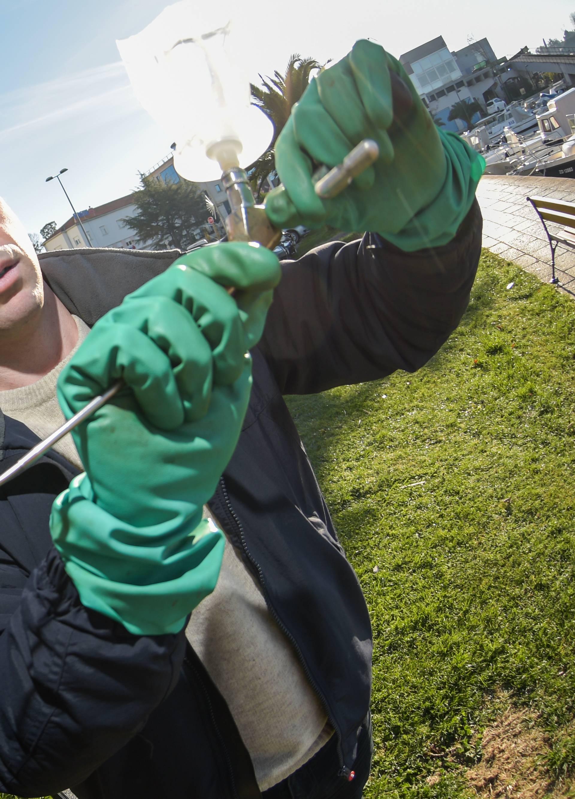 Doktor za palme: 'Spasio sam ih 150 u zadnjih godinu dana'