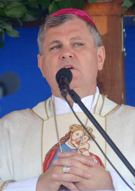 Čemu uvrede? Biskup Košić se borio za 'protuhrvatsku' vlast