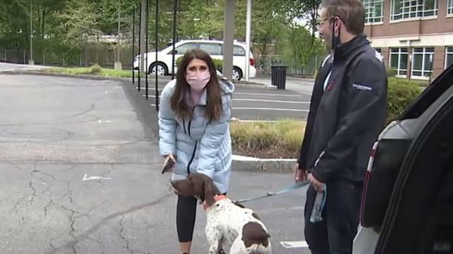 VIDEO Reporterka izvještavala o ukradenom psu pa ugledala otmičara kako ga šeta