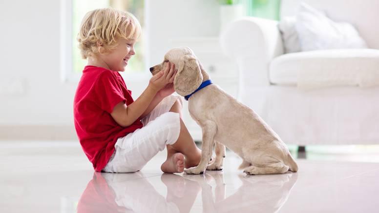 Pozitivno utječu na zdravlje: Tri odlična razloga da nabavite psa