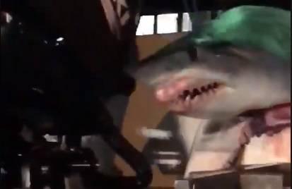 Morski pas virio iz kamiona i plašio vozače: 'Bio je prevelik'