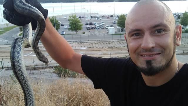 Kad službe ne reagiraju, ostaje opcija 'zovi čovika': Šibenčanin 'spasio' goste kafića od zmije