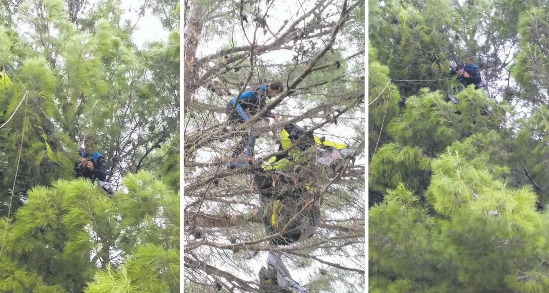 'Izgledao je potpuno  nemoćno':  Vjetar ga s mora odnio na drvo