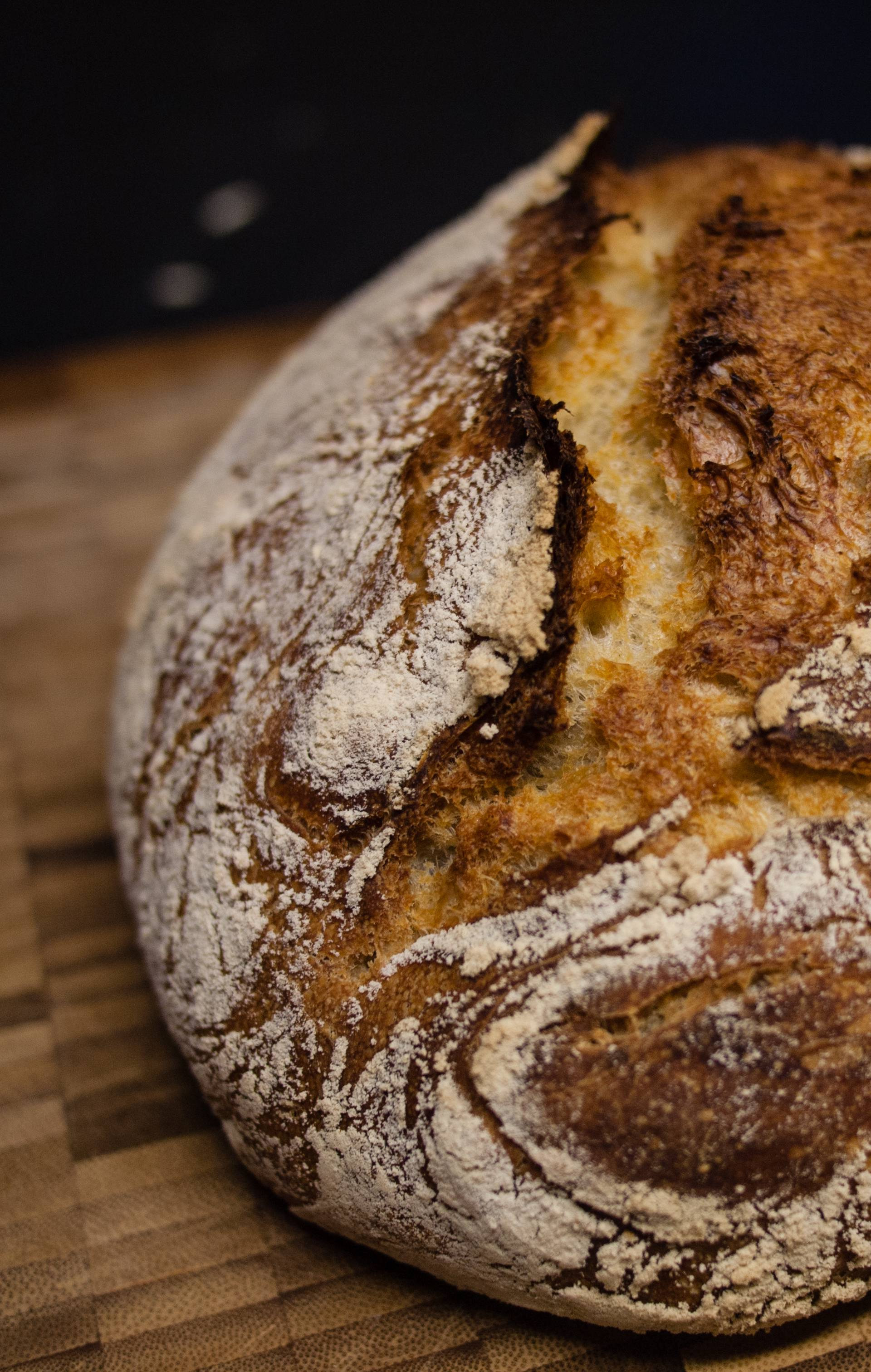 Biste li ga probali? Pronašli su izgoreni kruh star 5500 godina