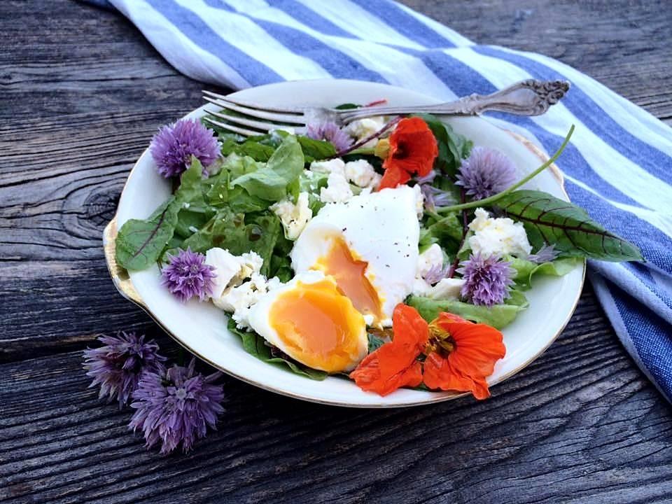 Domaći blogeri pokazali kako kuhati s cvijećem, fino i slasno