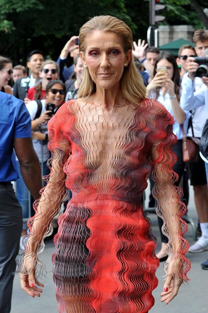 Celine Dion returns at the Hotel de Crillon wearing Iris Van Herpen dress