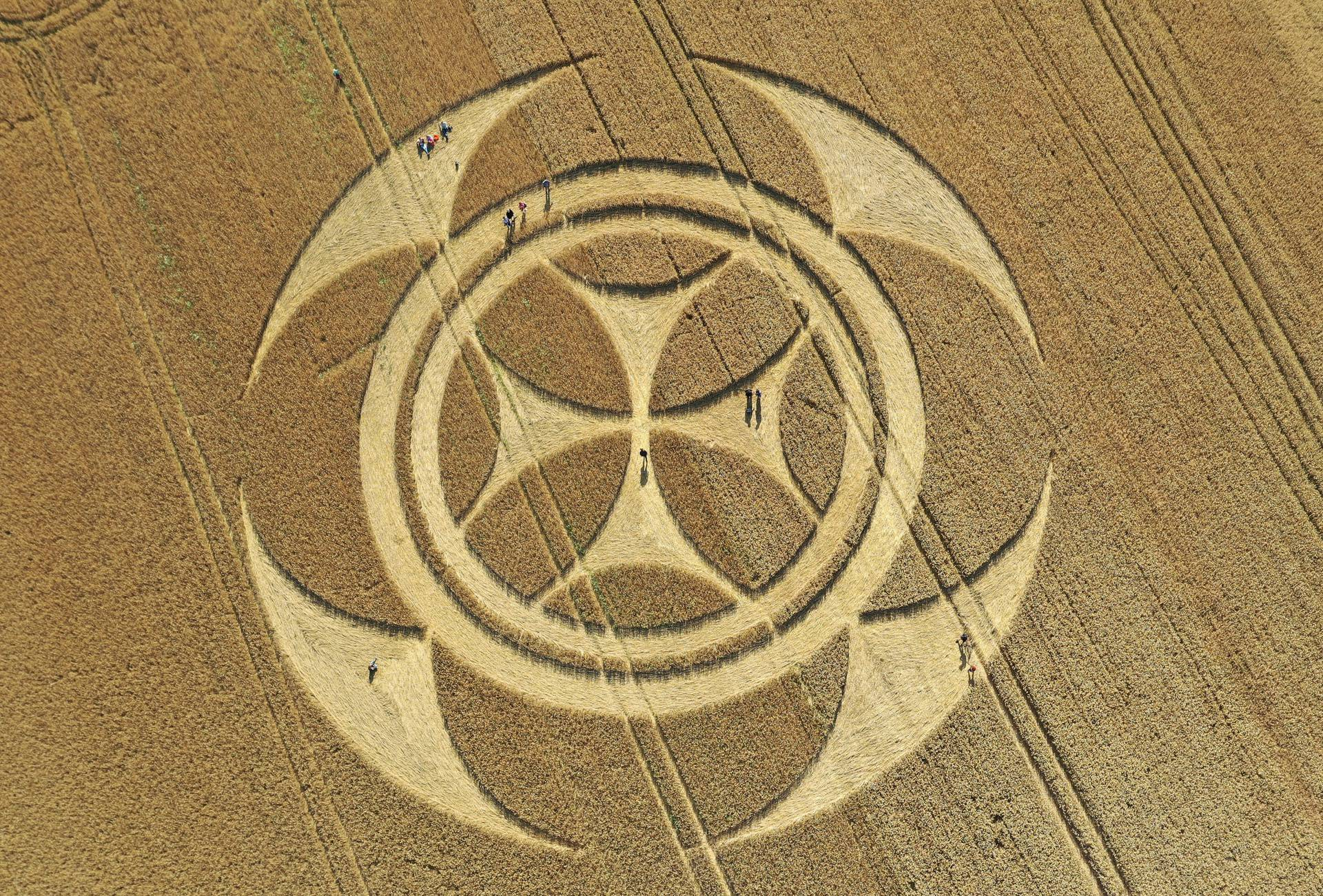 Visitors stand inside a crop circle in a wheat field in Vimy
