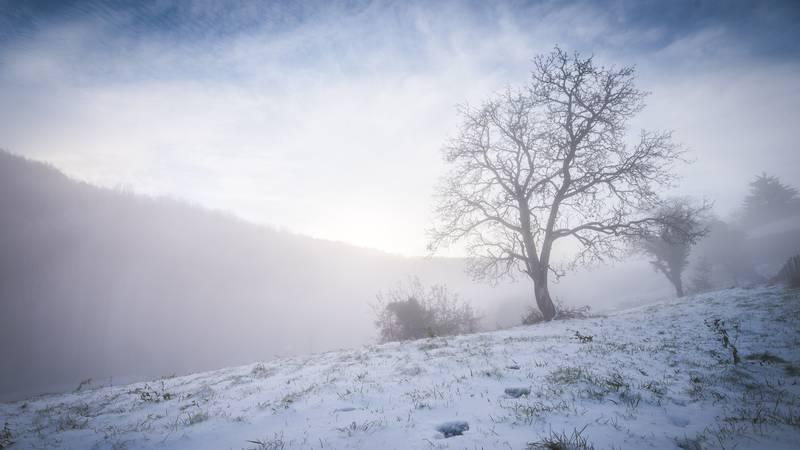 Čudesni prizori:  U maglovitom žumberačkom jutru, nebeski i snježni svod spojili se u jedno