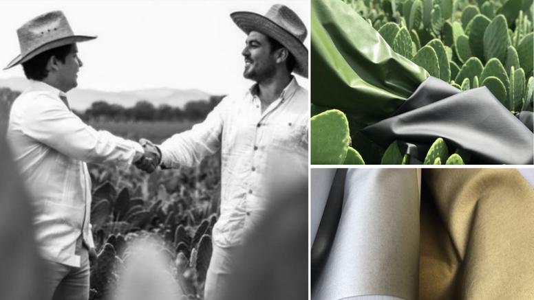Proizveli su kožu od listova kaktusa koja izgleda kao prava