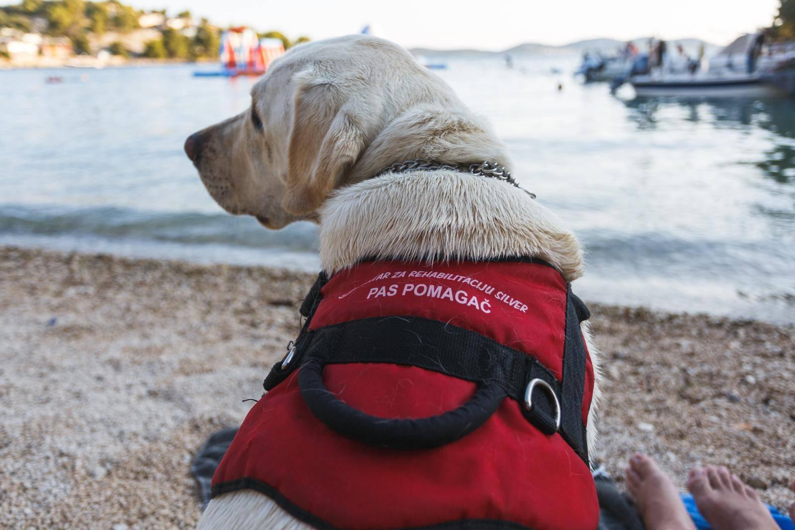 Krše mu prava: 'Sinu invalidu ne daju doći na plažu sa psom'