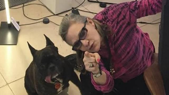 Sila više nije s njim: Kći Billie odrekla se psa Carrie Fisher