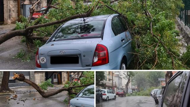 Udari vjetra lomili su grane na Marjanu, dio stabla pao na auto