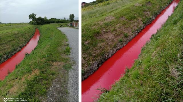 Krvavi potok teče u Dumovcu: 'Užasno smrdi po cijele dane'
