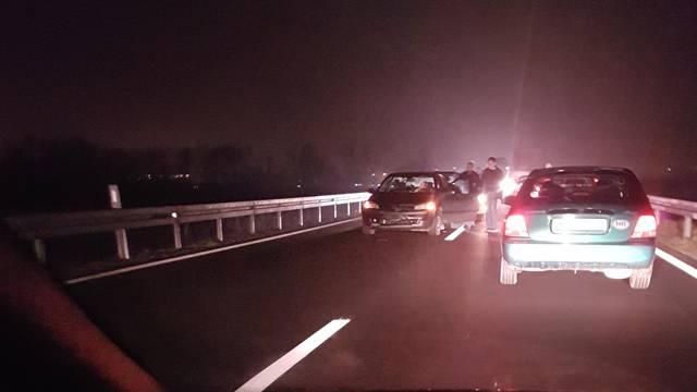 Nesreća: Divlja svinja istrčala na cestu, sudarila se dva auta