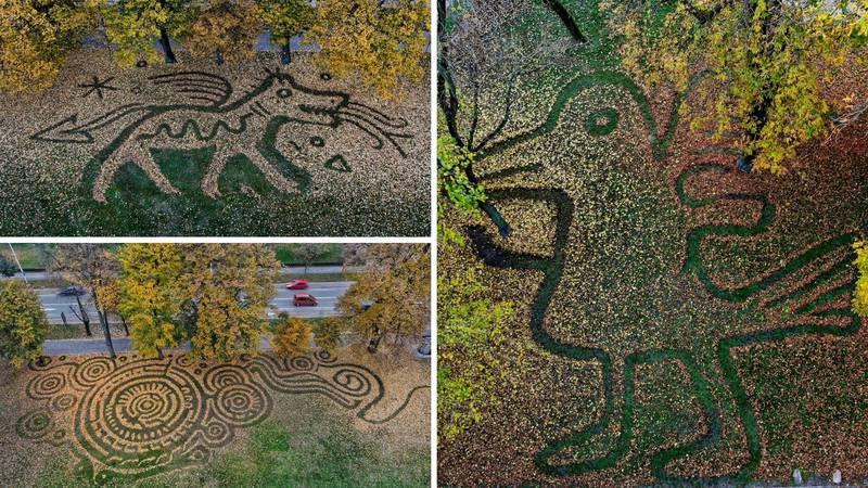 Osječki umjetnik u lišću stvorio predivne oblike: Zabilježim ih dronom prije nego vjetar puhne